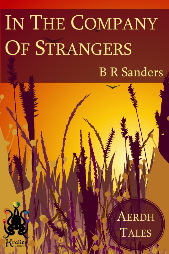 In The Company Of Strangers - B R Sanders